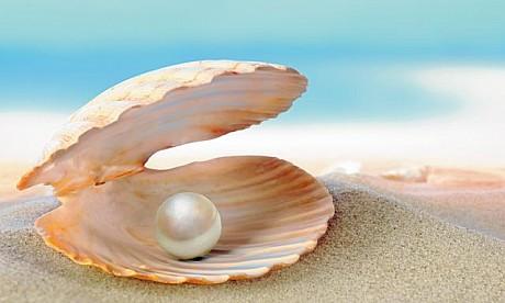 pearls0129_1_innerbig